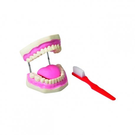 Hygiena zubov, Set